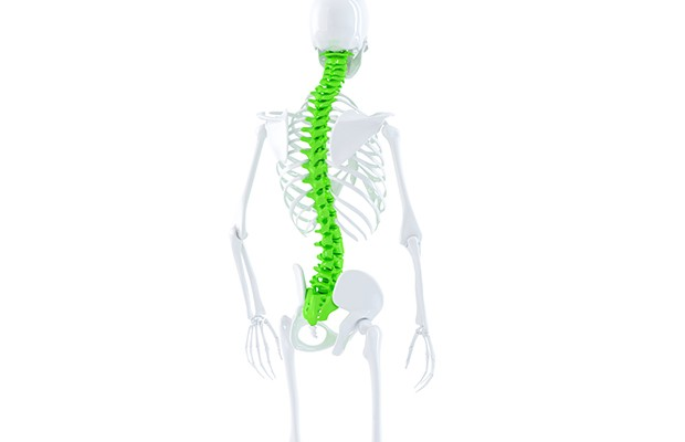 Spinal Problems and Referred Pains